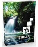 Újonnan revideált Károli-Biblia - Középméretű, kartonált