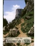 A keskeny úton - Sükösdi Pál